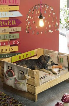 Pets, Home & Garden: Ideal toys for small cats Wooden Pallet Furniture, Dog Furniture, Wooden Pallets, Furniture Ideas, Recycled Furniture, Wooden Pallet Ideas, Pallet Tree, Pallet Wood, Furniture Stores