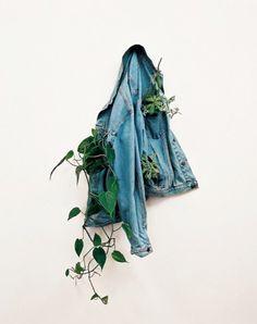 repurposed jean jacket = unique plant display