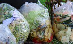 Waste Not, Want Not: 10 Ways to Reduce Your Food Waste Footprint - Modern Farmer Biodegradable Plastic, Biodegradable Products, One Green Planet, Modern Farmer, Cuban Recipes, Food Waste, International Recipes, Fresh Rolls, Fresh Fruit