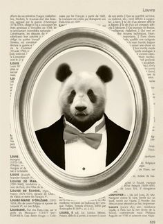 Animal portrait - Panda in suit. Really cool display in wooden frames. Classic. Doo check out the site. Cats, dogs, deer, lion, etc