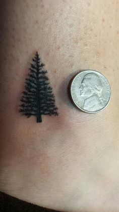 Evergreen tree tattoo by Cipherus Lee @liongodz tattoo studio  401 N. Sante Fe