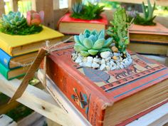 The Olive Tree Market - Growingbooks Plants in a book - what a great idea | via Monsoon Living