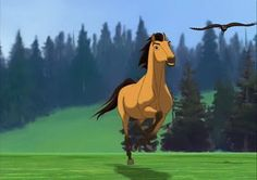 the artists studied, not just horses, but SPANISH MUSTANGS (recognizable to a horseman) for this great little film. Dreamworks Movies, Dreamworks Animation, Disney And Dreamworks, Spirit The Horse, Spirit And Rain, Horse Pictures, Pictures To Draw, Rain Animation, Disney Horses