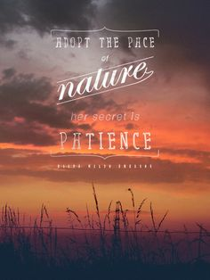 """""""Adopt the pace of nature; her secret is patience."""" - Ralph Waldo Emerson #beautiful #quote"""