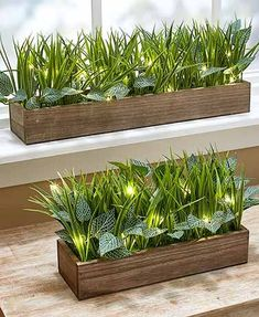 Induce a calming effect in the office or at home with this Lighted Faux-Grass Planter. The natural wood base is full of lush grass and other realistic foliage. Wooden Planters, Indoor Planters, Planter Boxes, House Plants Decor, Plant Decor, Pre Lit Garland, Faux Grass, Backyard Garden Design, Modern Backyard