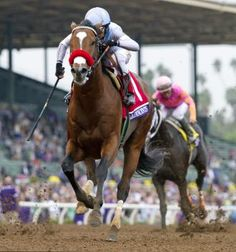 Goldencents winning Breeder's Cup Dirt Mile