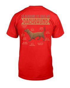 10 Reasons To Love Dachshund Best Dog - True Red baby daschund dachshund puppies, beagle dachshund mix puppies, weiner dog puppies dachshund #dachshundsofnewyork #dachshundslover #dachshundsdaily, dried orange slices, yule decorations, scandinavian christmas Dapple Dachshund Puppy, Dachshund Puppies For Sale, Long Haired Dachshund, Daschund, Toy Puppies, Dogs And Puppies, Dachshund Quotes, Cat Quotes, Animal Quotes