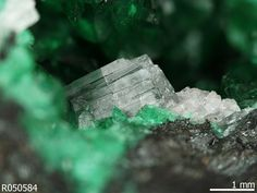 Schultenite incolore avec Keyite et Zincolivenite. Tsumeb mine, Tsumeb, Otavi District, Oshikoto, Namibia Source: University of Arizona Mineral Museum 14754