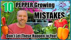 Organic Gardening, Gardening Tips, Vegetable Gardening, Growing Peppers, Companion Gardening, Garden Works, Overwintering, California Garden, English Country Gardens