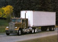 Vintage White Freightliner Conventional