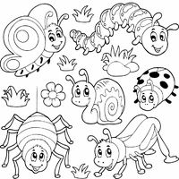 bugs and insects tons of coloring pages on this site