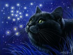 Black Cat Print Fireflies by Irina Garmashova Image Chat, Black Cat Art, Black Cats, Russian Art, Cat Drawing, Cat Face, I Love Cats, Cats And Kittens, Illustration Art