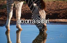 #BucketList - Go on a Safari.