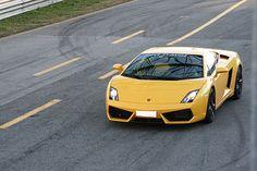 Lamborghini Gallardo. TheLamborghini Gallardo(/ɡaɪˈjɑrdoʊ/;Italian:[ɡaʎˈʎardo]) was asports carbuilt byLamborghini, theirbest-selling modelwith 14,022 being built throughout its lifetime.[1]Named after a famous breed offighting bull,[2]the V-10 Gallardo has been Lamborghini's sales leader and stable-mate to a succession of V-12 flagship models—first to theLamborghini Murciélago(4,099 built between 2001 and 2011), then to the current flagshipLamborghini Aventador.