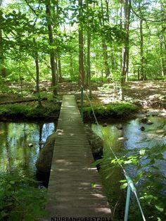Foot bridge over creek