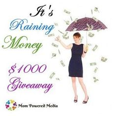 Raining Money Giveaway (Ends 5/01) - http://theluckyladybug.net/2013/04/04/raining-money/
