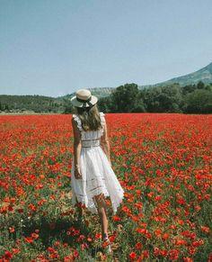 FIELD OF FLOWERS Avignon, France Photo from : Jenny Cipoletti (@margoandme)