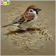 Terance James Bond, the Sparrow Indian Art Paintings, Animal Paintings, Bird Paintings, Realistic Paintings, Acrylic Paintings, Painting Art, Bird Drawings, Animal Drawings, Drawing Birds