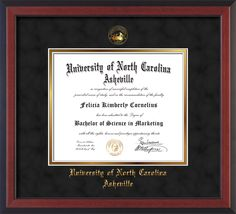 UNC Asheville U Diploma Frame-Che Reverse-w/UNCA Seal-Black Suede/Gold – Professional Framing Company