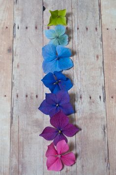 coloured flowers and wood