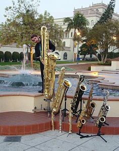 saxophone family tree. left to right: contra bass, baritone, tenor, alto, saprano