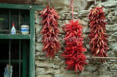 Dry chilli, stone village of the Qiang minority, Sichuan, China