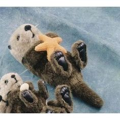 "14"" Sea Otter With Starfish Plush Stuffed Animal Toy"