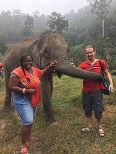 Mon voyage de noces en Thaïlande Foodie Travel, Photos, Elephant, Animals, Asian, Pictures, Animaux, Photographs, Animal