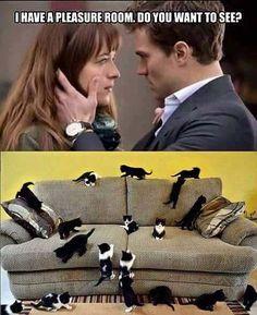 35 Funny Pics ~ 50 shades of grey meme pleasure room kittens