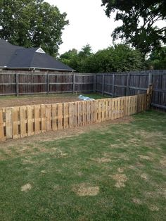 My free pallet fence!  Got the pallets for free and made a very nice fence to keep my puppy out of my garden.