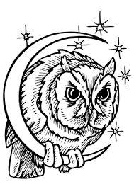 arte contemporânea coruja - Pesquisa Google