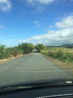 Estrada entre Tracunhaem e Nazaré da Mata