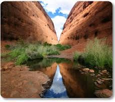Looking for things to do in Australia? Explore the must-dos and hidden gems on Viator and easily book Australia tours, attractions, and experiences you'll never forget. Society Islands, Alice Springs, 7 Continents, Pitcairn Islands, Helicopter Tour, Day Tours, Australia Travel, Holiday Travel, Wonders Of The World