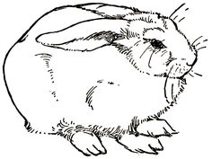 free printable rabbit digital image #Easter http://sweetly.weebly.com/easter.html