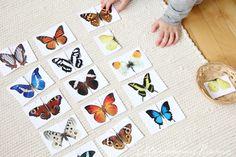 Free butterfly 2 piece matching cards from Eltern Von Mars.