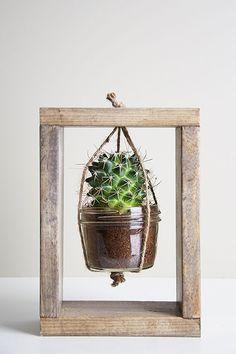 12 Do It Yourself Cactus Planter Ideas - Top Craft Ideas