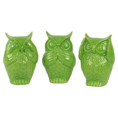 3-Piece Wise Owl Decor Set in Green