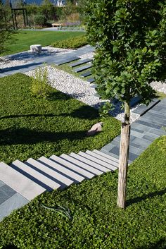 thick ground cover to cover sloped areas or awkwardly leveled areas next to walkways works well Ulf Nordfjell Landscape Stairs, Landscape Architecture, Landscape Design, Garden Stairs, Terrace Garden, Townhouse Garden, Contemporary Garden Design, Outdoor Steps, Minimalist Garden