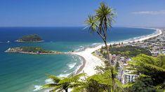 Espalar Wire Anchor – Espalier made easy North Island New Zealand, New Zealand Beach, New Zealand Travel, South Island, Tasmania, Auckland, Tauranga New Zealand, New Zealand Holidays, Mount Maunganui