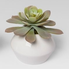 For artificial plant accents that look like the real thing, pick up the Succulents in White Pots from Project 62™. These green artificial succulents are housed in small white pots, which are perfect to add to an end table or coffee table to brighten up your space.<br><br>1962 was a big year. Modernist design hit its peak and moved into homes across the country. And in Minnesota, Target was born — with the revolutionary idea to celebrate design for all. Project 6...