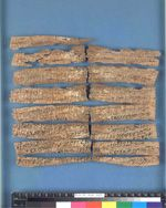 "The Oldest Surviving Substantial Collection of Buddhist Manuscripts (Circa 1 CE – 100 CE):  ""In 1994, the British Library Oriental and India Office Collections acquired a collection of twenty‐nine fragments of manuscripts written on birch bark scrolls in the Gāndhārī (a dialect of Prakrit) language and in the Kharoṣṭhī script. They were contained inside a clay pot, also bearing an inscription in the same language, in which they had been buried in antiquity. Preliminary analysis of these..."