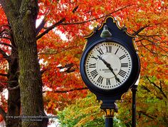 Fall color in Keene, NH