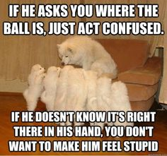"""""""If he asks you where the ball is, just act confused..."""""""