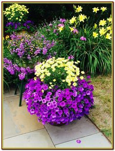 container gardening ideas in big pots Potted Plants Patio, Outdoor Plants, Garden Planters, Flower Planters, Flower Pots, Garden Yard Ideas, Diy Garden, Lawn And Garden, Beer Garden