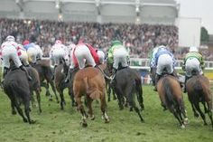 Cheltenham Racecourse don't you just love it!