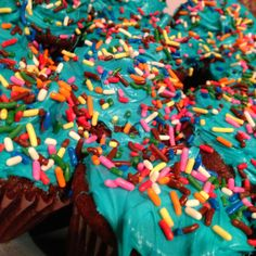 Yummy yummy chocolate cupcakes