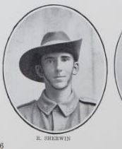 SHERWIN,   Reynold.   Private,   No.   5802,   Ist   Battalion.   Born   at   Maryborough,   and   educated   at   Childers.   The   son   of   the   late   William   Sherwin   and   Marie   Sherwin   (now   Mrs.     Cullum),   of   Cheapside   Street,   Maryborough.