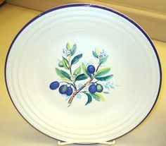 Homer Laughlin Fiesta Water Color Series Luncheon Plate