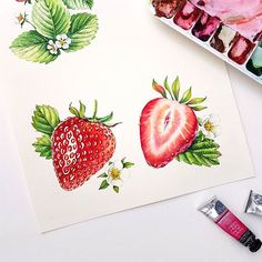 New fruit illustration design behance ideas Watercolor Fruit, Fruit Painting, Watercolour Painting, Watercolor Flowers, Painting & Drawing, Watercolors, China Painting, Watercolour Tutorials, Watercolor Techniques