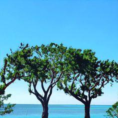 #beach #naturelovers #turquoise